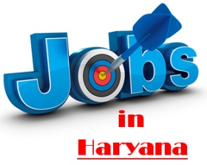 Govt. Jobs in Haryana