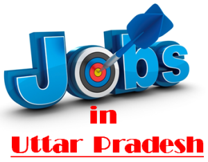 Govt. Jobs in Uttar Pradesh